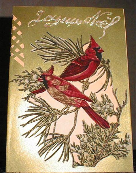 Oiseaux branche noël