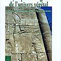 La gynécologie en egypte ancienne - ii