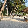 hôtel Pongwe beach_20