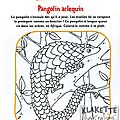 Coloriage - Pangolin