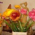 Voici des fleurs