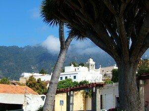 Photos_Tenerife_171