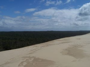 Dune_du_Pyla_et_for_t_de_pins