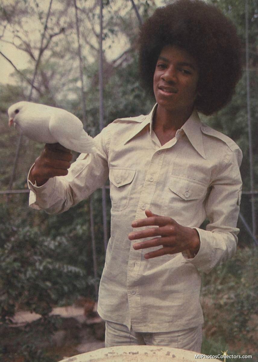 Michael tellement vrai a la recherche de lamour