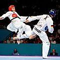 Body taekwondo