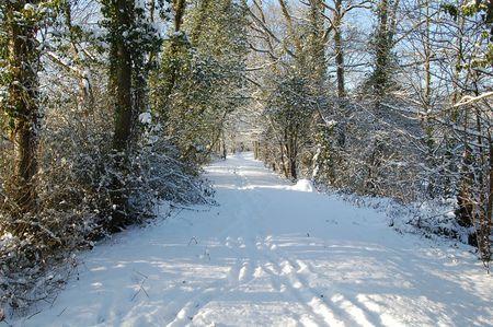Pecqueuse neige 084