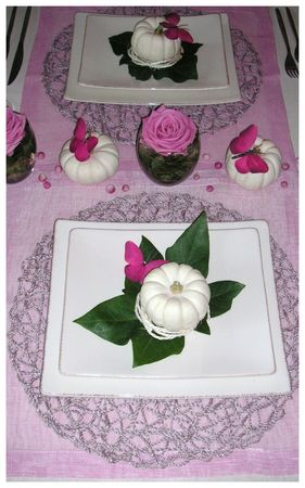 2009_09_06_table_rose_courge29