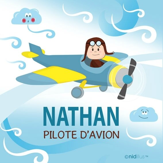 nidillus pilote avion coupon
