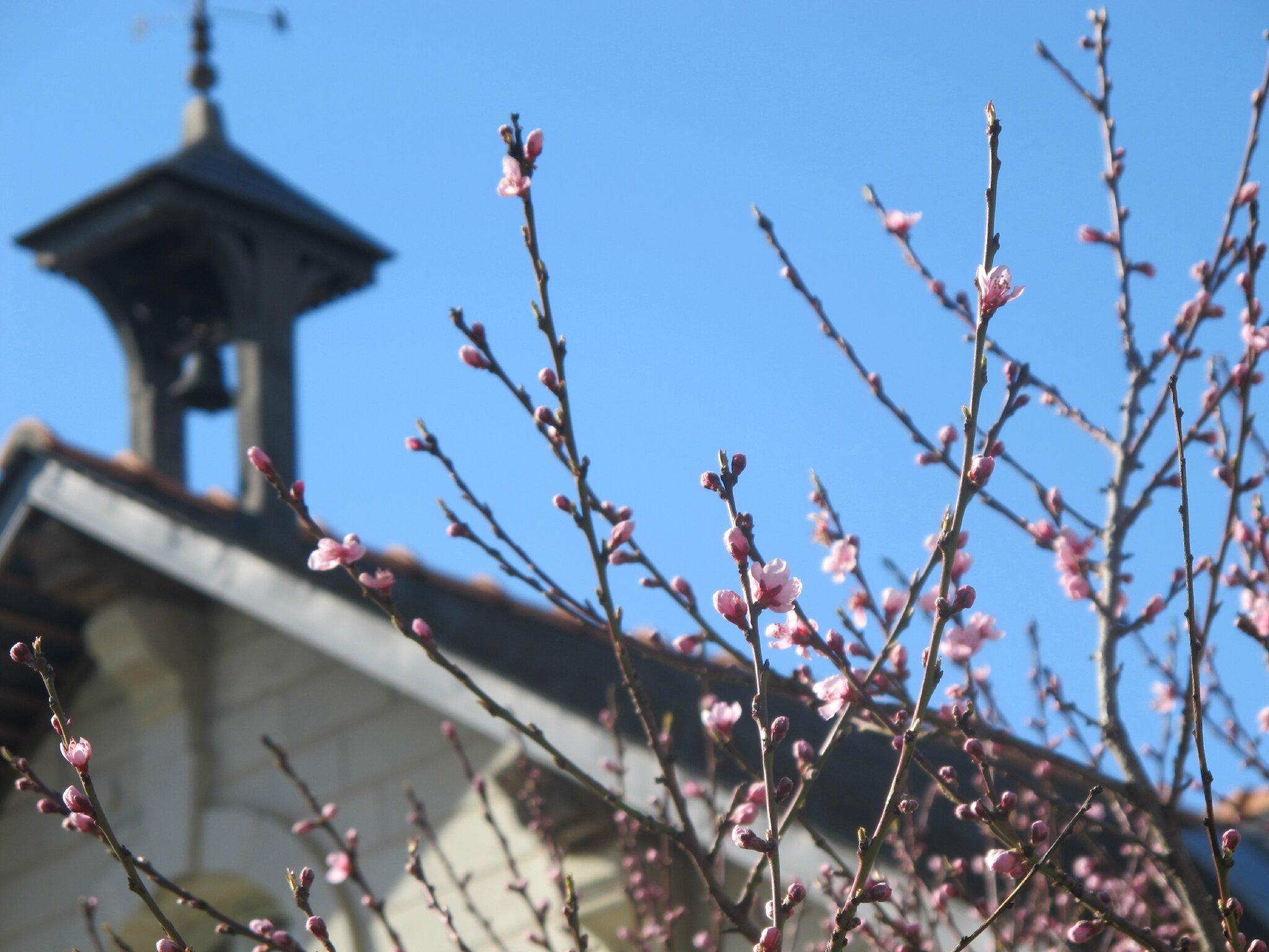 Le 1er jour du printemps par cl mentine bricole et casserole - 1er jour du printemps ...