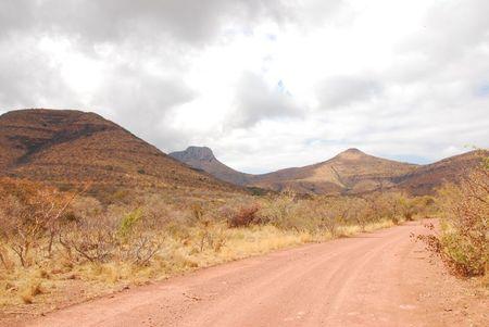 Afrique du Sud (587)
