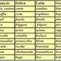 Non ! la langue niçoise n'est pas du provençal c'est du nissart !