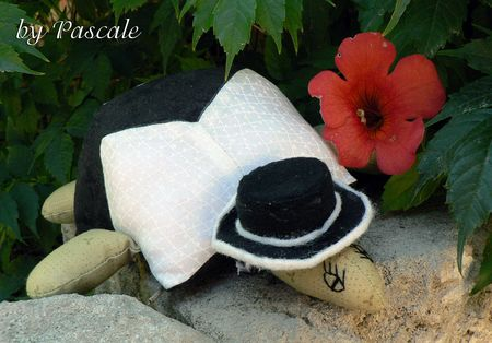 Tortue_Pascale2