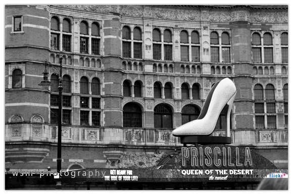 the_shoe
