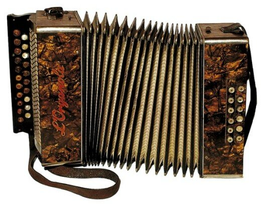 accordeon-diatonique-de-victor-sourdin-gomene