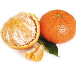 2009-01-26_Mandarine-Nutrition-Sante-7