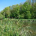 Etang magique, rivière féérique, eaux merveilleuses...