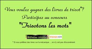tricotez_les_mots