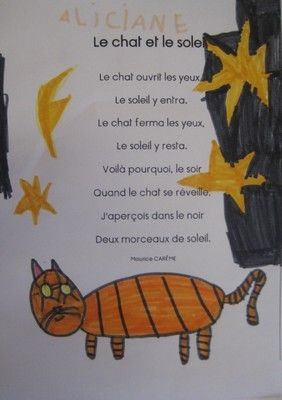 le chat et le casino