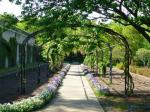 jardin botanique (157).JPG