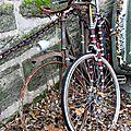vélo, rouille, automne_2627