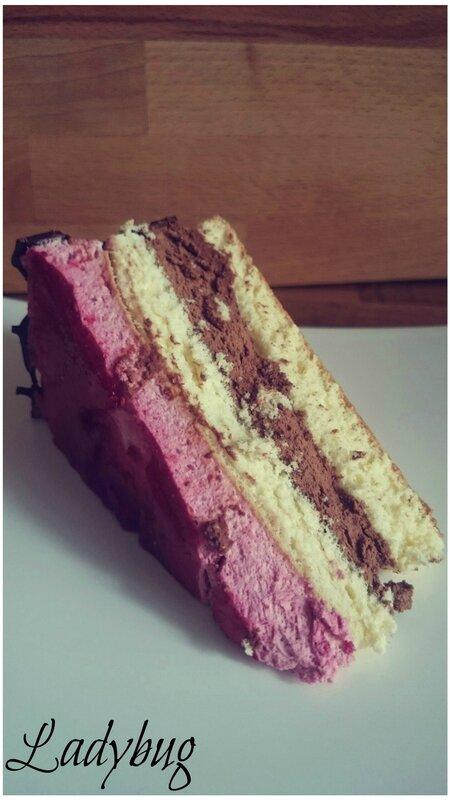 Bavarois chocolat framboise (1) retouches