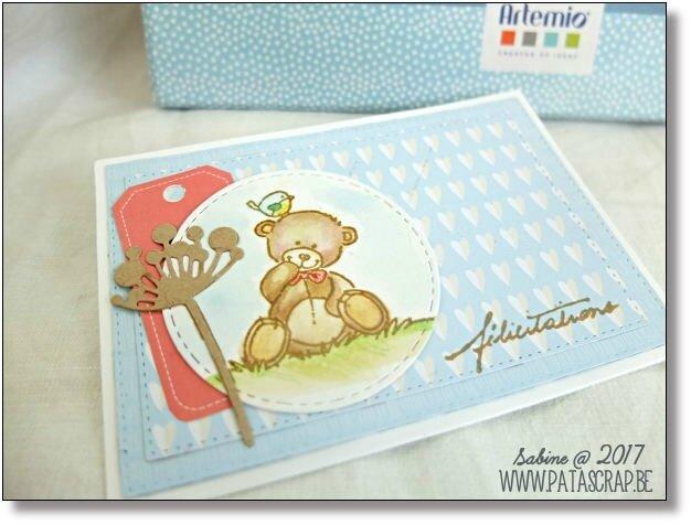 carte naissance 01