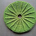 Frisbee cactus