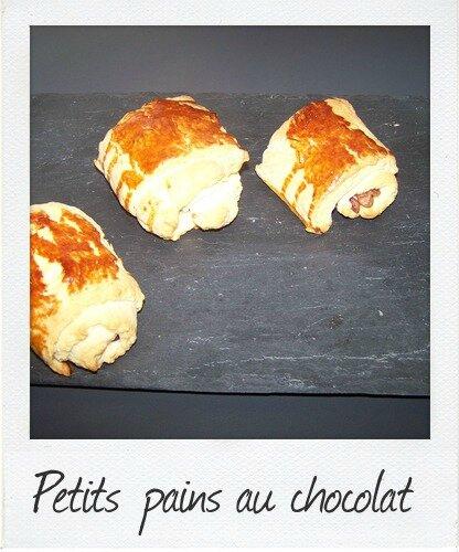 Petits pains au chocolat brioch s map du bruit - Du bruit dans ma cuisine ...