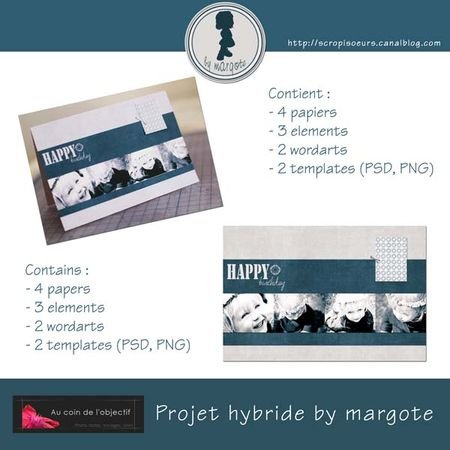 preview_projet_hybride_by_margote