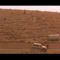 Le Got de la Cerise (Tam-e gils) d'Abbas Kiarostami - 1997