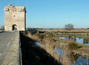 Aigues_Mortes_tour_carbonn_re