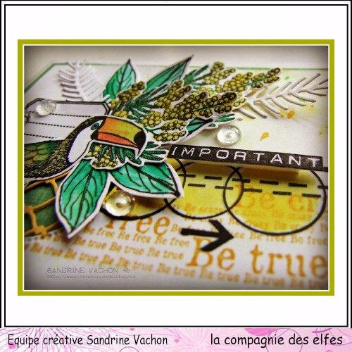 Sandrine VACHON Oct LA COMPAGNIE DES ELFES (3)