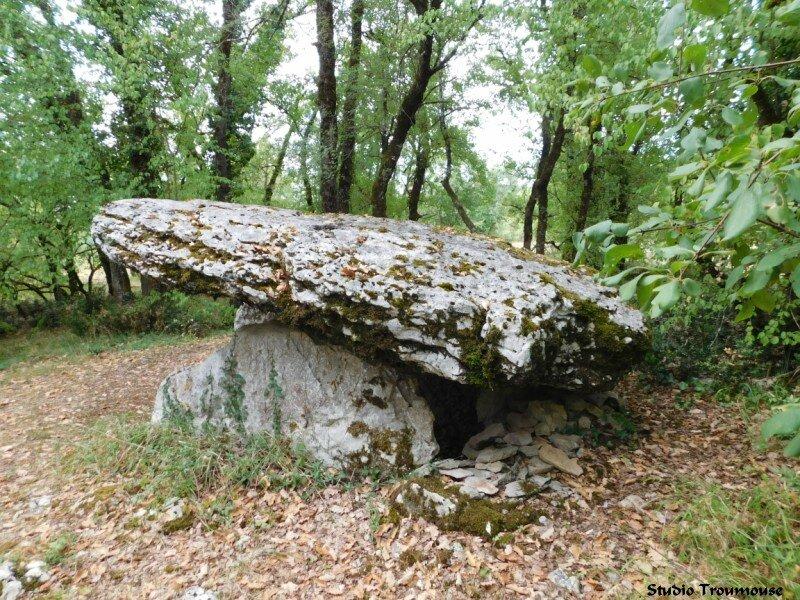 dolmen 1c [800x600]