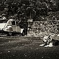 Bourse d'échange/vente de pièces vieilles voitures