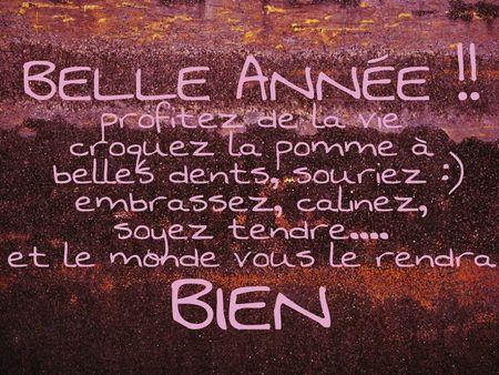 CARTE_DE_BONNE_ANN_E