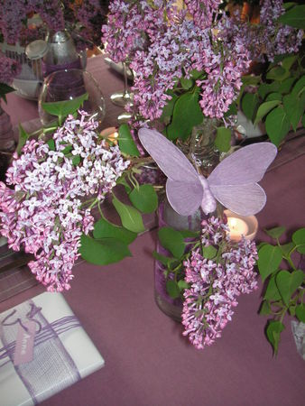 table_lilas_038