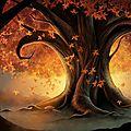 Sal automne #3