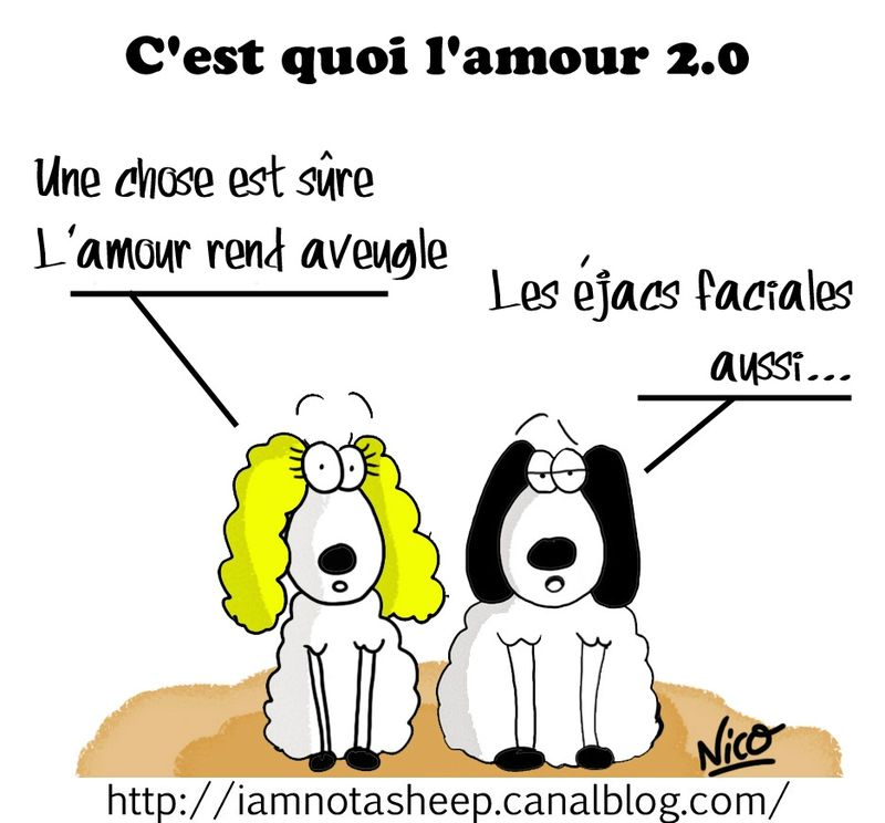 c 39 est quoi l 39 amour 2 0 i am not a sheep. Black Bedroom Furniture Sets. Home Design Ideas