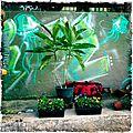 Les jardiniers en herbe du quartier