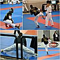 Open international de jujitsu orléans 2012