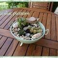Mini jardin passoire