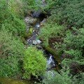 ruisseau du village