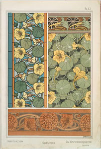 Capucine___La_plante_et_ses_applications_ornementales___Grasset___vers_1896__NYPL_