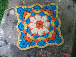 african_flower_in_progres_square_2