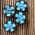 boutons fleurs bleues