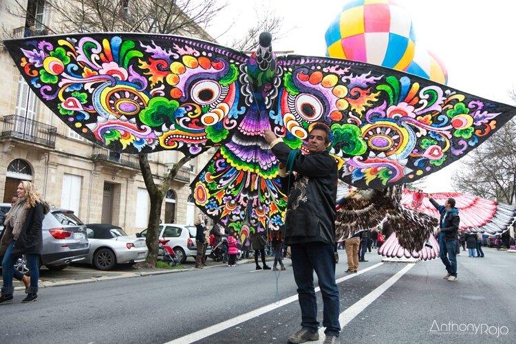 Carnaval_des_deux_rives_2014_©anthonyrojo-9