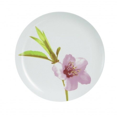 assiette-plate-motif-fleurs-25-cm-water-color-la-table-d_arc