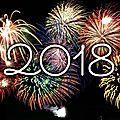 Actualités: bonne année 2018