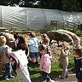 23 mai visite à la chèvrerie de Baradozic