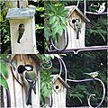 Les oiseaux du jardin du Bonheur